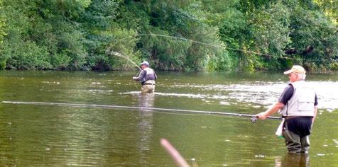 pêche mouche semois